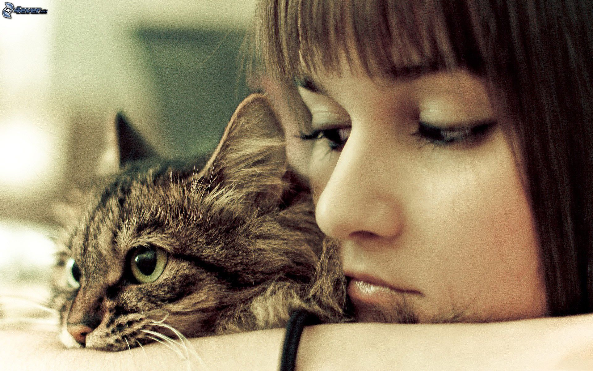 fille-triste-chat-159810
